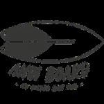 Ahoi Boards Logo