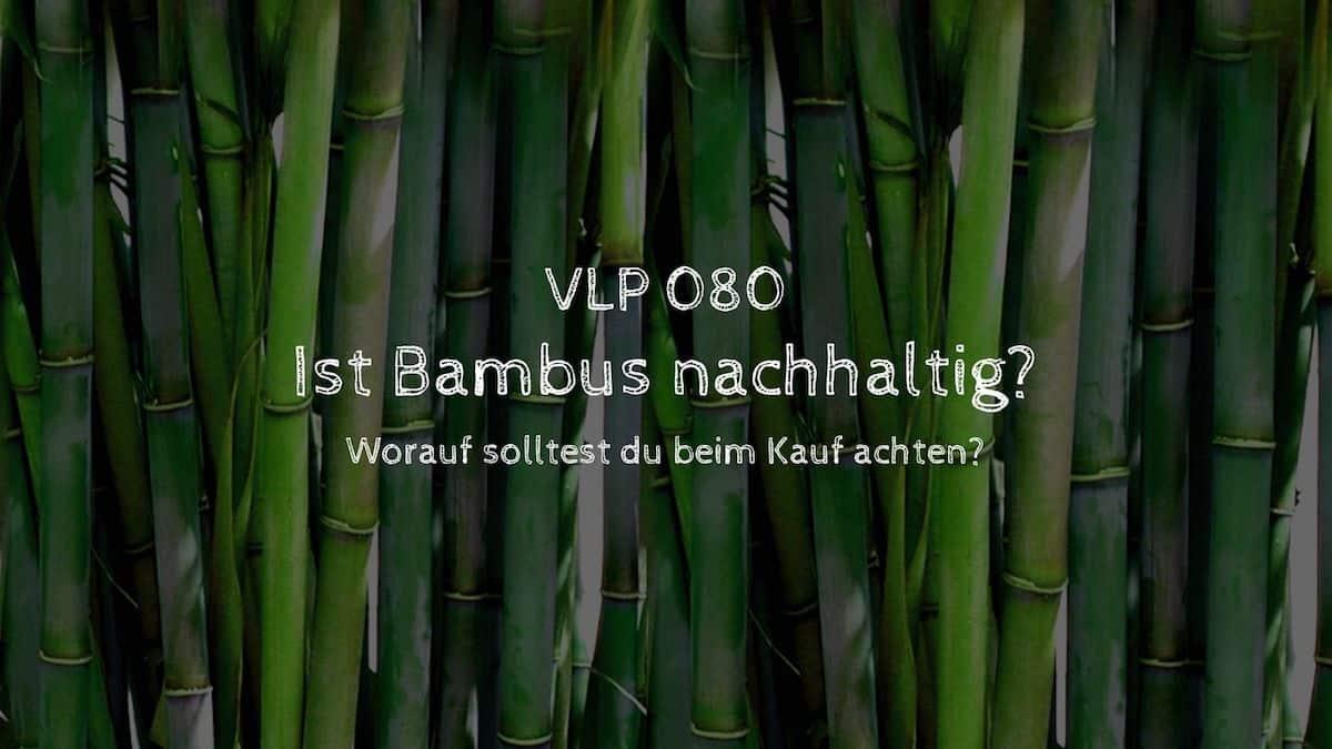 Ist Bambus nachhaltig? - Worauf ist beim Kauf zu achten?