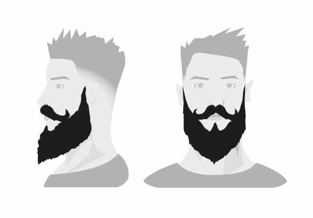 6 Barttypen -Vanlust Pflege Tipps!