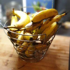 4 Fakten und Tipps zum Containern